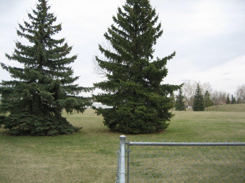 14735 25 ST NW, EDMONTON AB, T5Y2E8, 3 Bedrooms Bedrooms, ,2 BathroomsBathrooms,Town House,Rented,25,1001