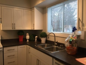 17409 95 ST, Edmonton, T5Z 2A9, 3 Bedrooms Bedrooms, ,1.5 BathroomsBathrooms,Town House,Recently Rented,95,1041